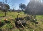 Quinta de Matamouros_28