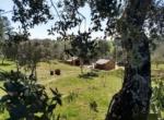 Quinta de Matamouros_40