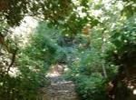 Santa Clara Valley11