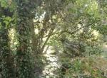 Santa Clara Valley21