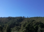Santa Clara Valley5