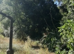 Santa Clara Valley9